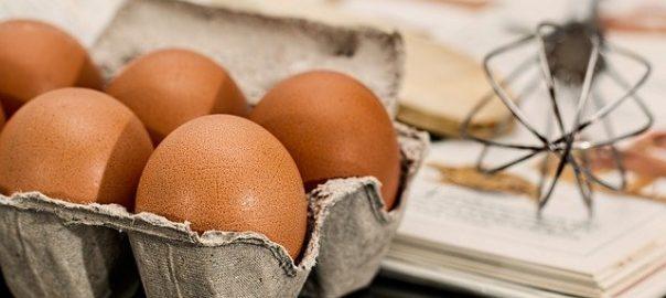 erezione delle uova di quaglia)